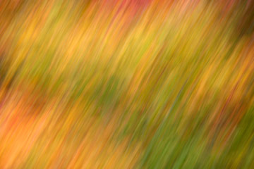 Fine art photography: 018 - Indian summer 1